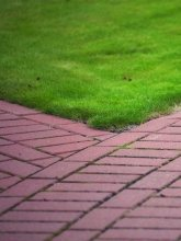 Perfectly Edged Red Brick Walkway With Manicured Lawn