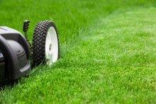 Mower Cutting Green Lawn