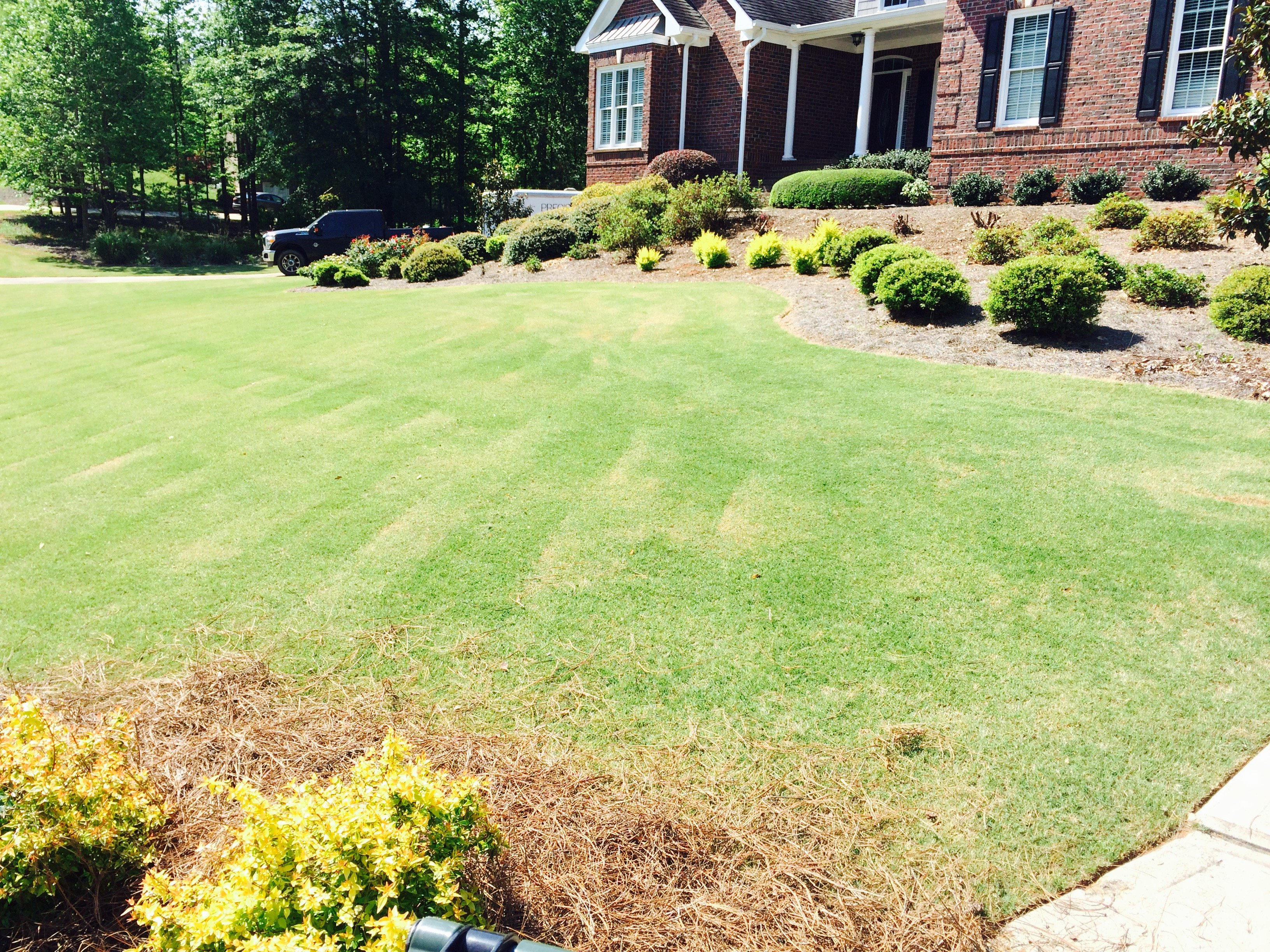 Custom Designed Landscaping With Garden Beds, Shrubs, And Manicured Lawn